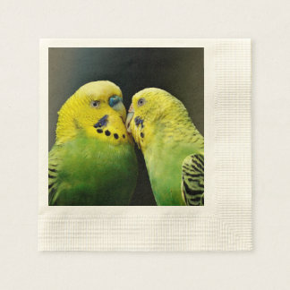 Kissing Budgie Parrot Bird Paper Napkins