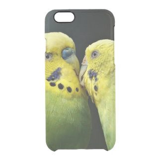 Kissing Budgie Parrot Clear iPhone 6/6S Case