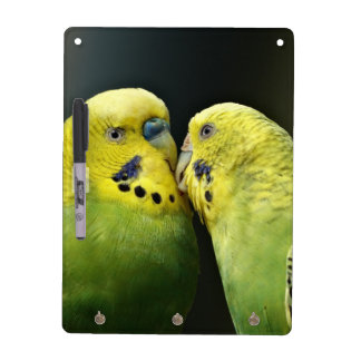 Kissing Budgie Parrot Dry Erase Board