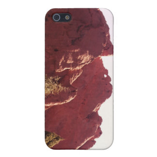 Kissing Camels Case For iPhone 5/5S