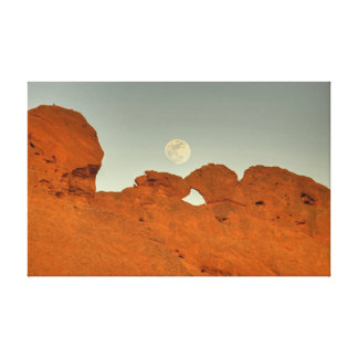 Kissing Camels Under Moon 01 Canvas Print
