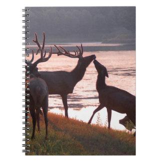 Kissing Elk Spiral Notebooks