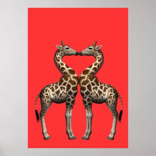 Kissing Giraffes Poster
