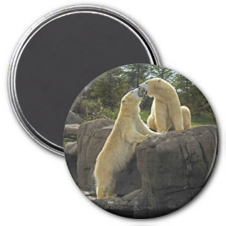 Kissing Polar Bears Magnet