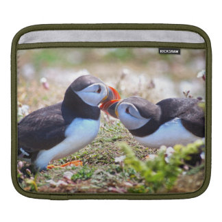 Kissing Puffins iPad Sleeve