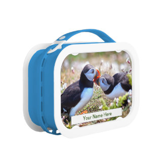 Kissing Puffins Lunch Box (Enter Your Name)