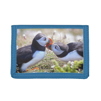 Kissing Puffins Wallet