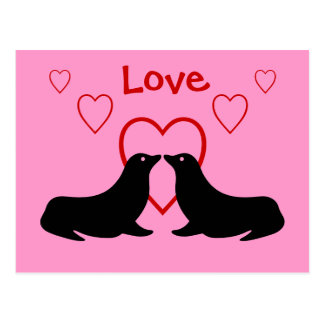 Kissing Sea Lions - Love Postcard