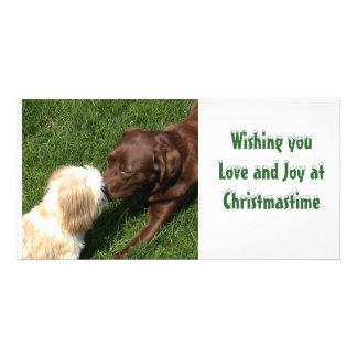 Kissing Shihtzu & Choc Lab Dogs Xmas Photo Card