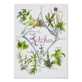 Kitchen Herb Garden Watercolor Basil Poster