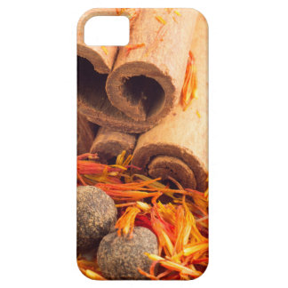Kitchen spices and herbs close-up iPhone 5 case