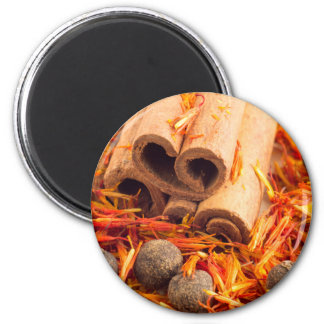 Kitchen spices and herbs close-up magnet