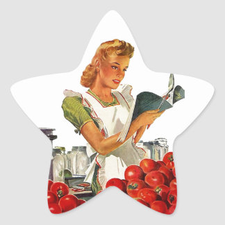 Kitchen Star Stickers Vintage Cooking Recipe Salsa