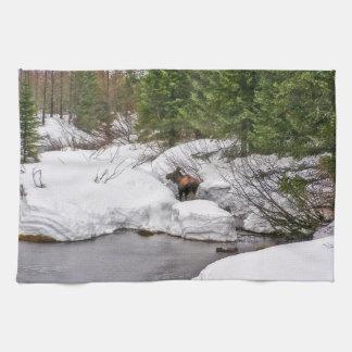 Kitchen Towel Western Moose Wildlife