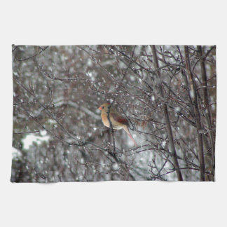 kitchen towel with photo of female cardinal