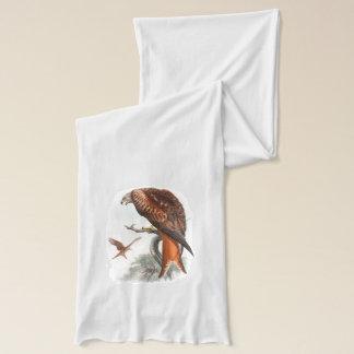 Kite Glead Hawk John Gould Birds of Great Britain Scarf