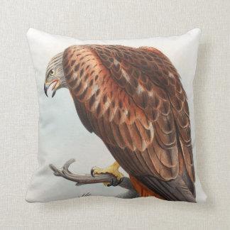 Kite Glead Hawk John Gould Birds of Great Britain Throw Pillow