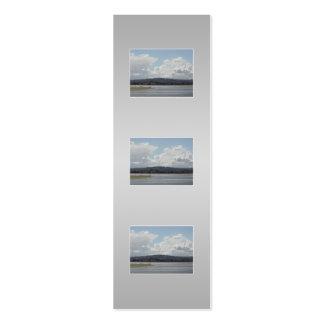 Kite Surfers. Scenic view. On Gray. Pack Of Skinny Business Cards