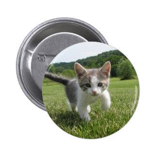 kitten 2 inch round button
