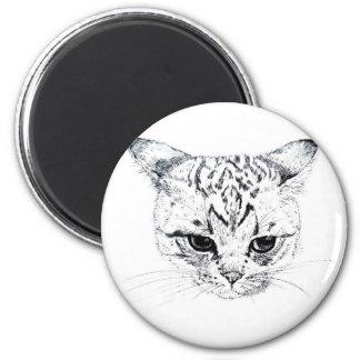 Kitten 2 Inch Round Magnet