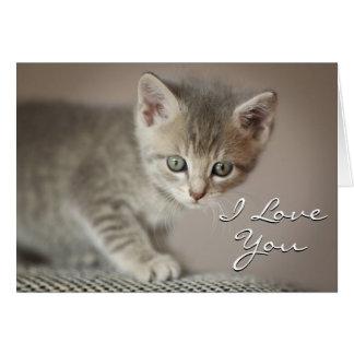 Kitten (6 Weeks) Card