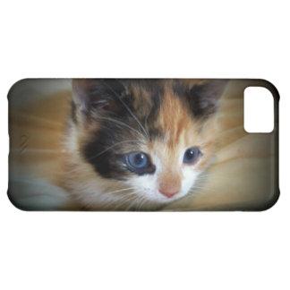 Kitten Alert iPhone 5C Cases