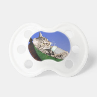 Kitten and baby bottle baby pacifiers