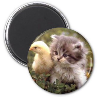 Kitten and Baby Chick Magnet
