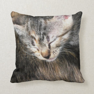 Kitten and Mom Throw Pillow