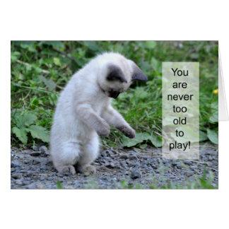Kitten Attack! ....a Rock Card