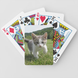 kitten bicycle playing cards