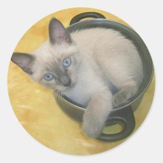 Kitten Cacciatore Classic Round Sticker