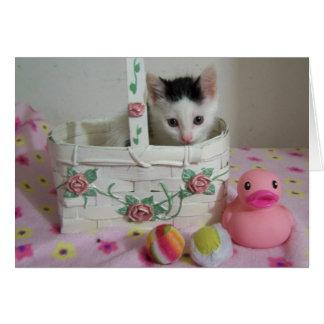 Kitten card
