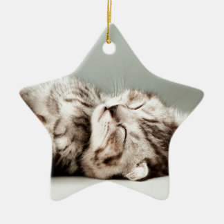 kitten, cat, cute tabby cat, cute cats, cute kitte ceramic ornament