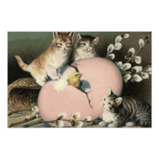 Kitten Cat Easter Chick Colored Painted Egg Photograph