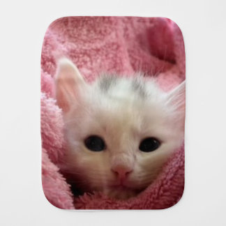 kitten-cat-fluffy-cat-cute-62321 burp cloth