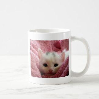 kitten-cat-fluffy-cat-cute-62321 coffee mug