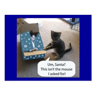 Kitten Christmas Surprise Postcard