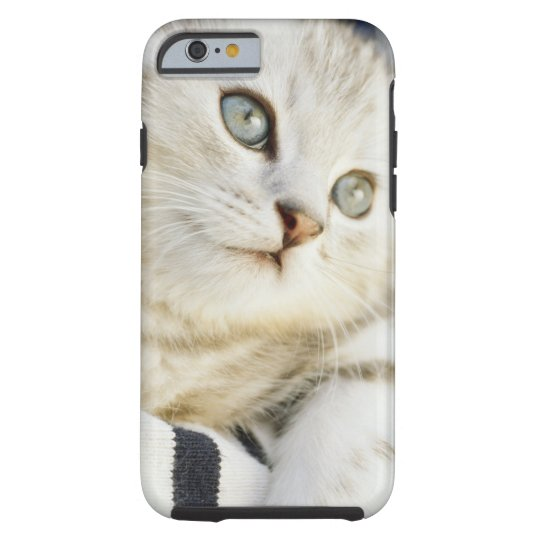 Kitten, close-up 2 tough iPhone 6 case