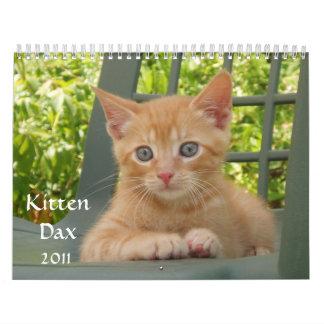 Kitten Dax 2011 Wall Calendar