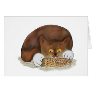 Kitten Enjoys Eating Corn on the Cob Card
