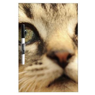 Kitten face Dry-Erase boards