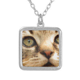 Kitten face silver plated necklace
