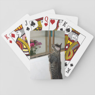 Kitten Finds Flowers Playing Cards