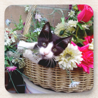 Kitten in a Basket Coaster