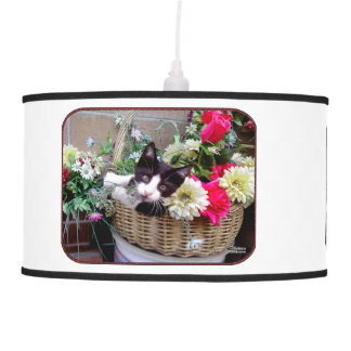 Kitten in a Basket Pendant Lamp