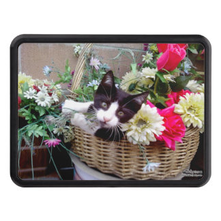 Kitten in a Basket Trailer Hitch Cover