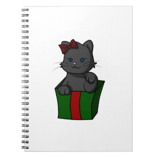 Kitten in a Box Spiral Notebook