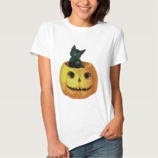 Kitten in a Pumpkin Tee Shirt