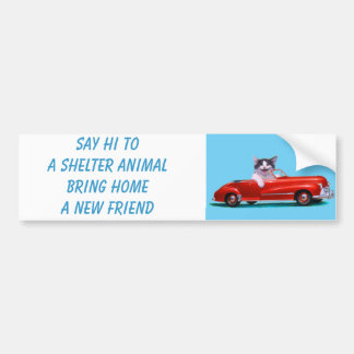 Kitten in a Red Convertible Bumper Sticker